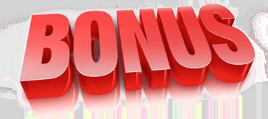 ray-higdon-pro-blog-academy-bonuses